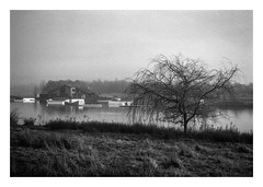 FILM - Rother Valley waterski place (fishyfish_arcade) Tags: blackandwhite bw 35mm blackwhite analogphotography filmphotography film monochrome mono hp5 ilford nikonf80 analogcamera filmisnotdead istillshootfilm nikkor2880f3556afd lake rothervalley
