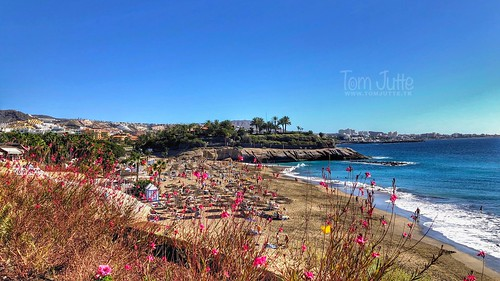 Beach, Playa del Duque, Costa Adeje, Tenerife, Spain - 3185