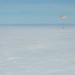 Expedition 61 Soyuz Landing (NHQ202002060024)