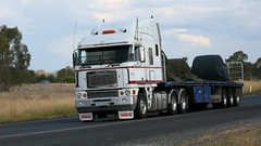 Albury Unknowns (2 of 3) (Jungle Jack Movements (ferroequinologist) all righ) Tags: ken kenny kenworth k100 freightliner argosy volvo fm albury wagga melbourne sydney olympic way hume highway freeway hp horsepower big rig haul freight cabover trucker drive transport carry delivery bulk lorry hgv wagon road nose semi trailer deliver cargo interstate articulated vehicle load freighter ship move motor engine power teamster truck tractor prime mover diesel injected driver cab cabin loud wheel exhaust double b australia australian