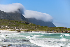 A Day on the Beach near Cape Town: South Africa (mharoldsewell) Tags: 2020 capetown d750 january mountains nikon sigma100400mm southafrica southernafrica beach coast mharoldsewell mikesewell photos