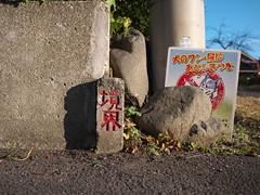 Hadano#104 (tetsuo5) Tags: 神奈川県 kanagawa 秦野 hadano 末広町 suehirocho dmcgx8 dgsummilux15mmf17