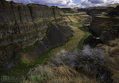 Gold ribbons (Dave Arnold Photo) Tags: wa wash washington palouse palousefalls palouseriver river falls waterfall big iconic outdoor statepark arnold davearnold davearnoldphotocom pic picture photo photography photograph photographer idyllic landscape spread sky paradise awesome canon 5dmkiii us usa beautiful serene peaceful huge high franklincounty wild fantastic american scenic 1635mm cloud pnw pacificnorthwest rural eastern southeast steptoe butte joso canyon cascade pool waterfalls desert lightroom photoshop nik