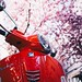 Selective focus photography of red motor scooter - Credit to https://homegets.com/