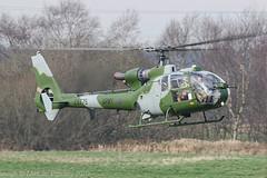 ZA775 - 1980 build Westland Gazelle AH.1, inbound down Runway 08L at Barton (egcc) Tags: 1817 aac aerospatiale armyaircorps barton cityairport egcb gazelle gazelleah1 helicopter lightroom man manchester sa341 westland za775