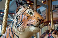 Carousel tiger (unit2345) Tags: chapelhillmall cuyahogafalls ohio mall