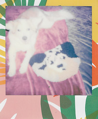 Lady and a Dog Friend (H o l l y.) Tags: polaroid analog portrait instant film 600 flash photography color girl hotdog party candid retro indie vintage bright light funny humor nun rug fiber art dog cute animal puppy pup
