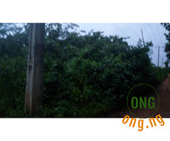 3 plots of land at Apete, Awotan (omoresther2008) Tags: olx nigeria olxnigeria nig abuja lagos phones sell buy online