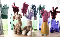 Serious still life * (Snorkle-suz) Tags: gloves smileonsaturday blue newzealand stilllife cute green glass fun happy bottles humor nz inside giraffe aotearoa tabletop canoneos600d canoneosrebelt3i canoneoskissx5 rabbit cow softtoys 1855mm 18to55mm