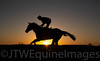 Racing - Post Racing - Sunset on a racecourse gallop (2)