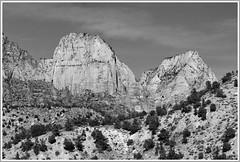 Majesty in Monotone (Karen McQuilkin) Tags: majestyinmonotones zion utah mountains