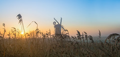Horsey Mill (2 of 2) (Patricia Wilden) Tags: wideanglelens landscape sunrise horsey eos70d earlymorning thurne pumpingstation mills canon 1022mm norfolk 6feb2020