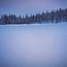 Au milieu des lacs gelés