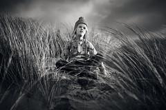 Roaming the dunes 1 (PascallacsaP) Tags: roaming dunes environmentalportrait environmentalportraiture portraiture portrait monochrome bw blackandwhite blackwhite marram marramgrass sea zee zeeland zeelandicflanders zeeuwsvlaanderen netherlands thenetherlands clouds sand noiretblanc
