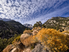 What more could one desire?   Eastern Sierra, California (W_von_S) Tags: easternsierra sierranevada california kalifornien mountains berge gebirge colorful farbig autumn herbst november 2019 southwest südwesten usa us unitedstates america amerika vereinigtestaaten landschaft landscape paysage paesaggio paisaje natur nature wvons werner sonyilce7rm4 sony fullframe vollformat felsen rocks wood sträucher bushes yellow gelb gold blau blue whiteblue weisblau clouds wolken himmel sky composition komposition outdoor whitneyportal