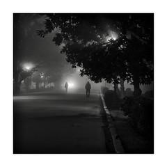 Sevilla (jlavila) Tags: parque fog noche fuji niebla bruma 2020 fujifilmx igjlavila2018 rio sevilla spain