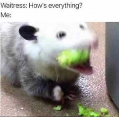 How's everything (gagbee18) Tags: aww funny memes waitress
