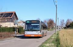 8169 77 Kraainem (via Ban-Eik) (brossel 8260) Tags: belgique bruxelles stib bus