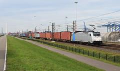 2018-11-09_8358 KombiRail Europe 186 289 (Railpool) Waalhaven Rotterdam (Peter Boot) Tags: traxxf140ms traxx bombardier 918061862895drpool rpool drpool kombiraileurope kombirail kre 186289 186 kre186289 railpool cargo goederentrein goederenvervoer nederland spoor spoorwegen train trein container containertrein havenspoorlijn waalhaven rotterdam boboel eloc