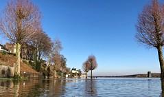 De Maas / Kessel (rob4xs) Tags: comment favorite kessel maas moodermaas rivier river meuse hoogwater peelenmaas limburg nedeland thenetherlands niederlande holland