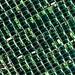 DSC_2758_0001-7 green pixels
