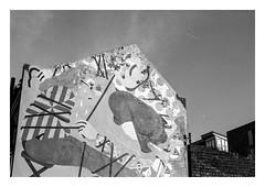 FILM - Gable (fishyfish_arcade) Tags: 35mm analogphotography bw blackwhite blackandwhite filmphotography filmisnotdead hp5 istillshootfilm monochrome nikkor50mmf18afd nikonf80 analogcamera film ilford mono sheffield streetart