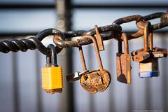 Locks on the Docks (mlpix.co.uk) Tags: liverpool albert dock locks lock chain waterfront love commitment water rust rusty