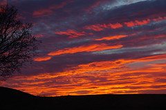 Photo of Winter sunset