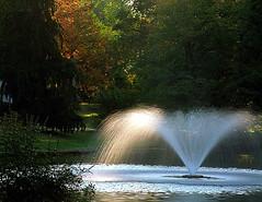 "Cincinnati - Spring Grove Cemetery & Arboretum ""Morning Light On Ceder Lake Fountain"" (David Paul Ohmer) Tags: cincinnati ohio spring grove cemetery arboretum morning light ceder lake fountain burn"