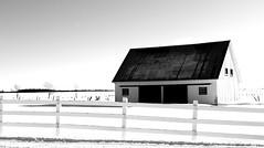 A barn in winter (pegase1972) Tags: winter hiver neige snow barn grange fence montérégie monteregie quebec qc québec blackandwhite bw
