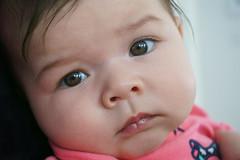 Clara 7 mois (jlp771) Tags: enfant child face visage sony ilce6000 portrait