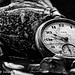 Watch and Seashells in Black and White
