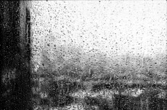Rain (Gabriella Ollandini) Tags: monochrome rain raindrops bw blackandwhite bwfp analog analogue analogica view vintage city urban cityscape texture blur mood mist ilford istillshootfilm filmisnotdead filmphotography filmcamera film 35mm weather cinestill monobath self developed df96 bad