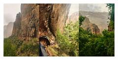 Zion Hike Triptych (Karen McQuilkin) Tags: weepingrock zionhiketriptych zion rainyday hike summerrain