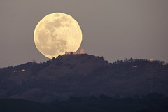 The moon rises on a place far far away (PeterThoeny) Tags: lickobservatory sanjose sanfranciscobay sanfranciscobayarea california mthamilton day dusk moon moonrise sky outdoor clear landscape skyline observatory building mountain sony sonya6000 a6000 tamron tamronsp150600mmf563 1xp raw photomatix hdr qualityhdr qualityhdrphotography fav200 longlens