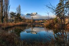 L'écharpe du Mt Granier (Savoie 02/2020) (gerardcarron) Tags: arbres canoneos80d ciel lacstandré lake lesmarches matin morning mountains paysage savoie water winter hiver landscape