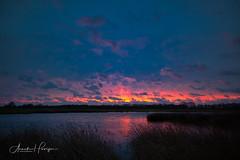 Stormy sunrise (aNNajé) Tags: dwingelderveld kloosterveld natuurgebied zonsopkomst landschapsfotografie naturephotography natuurmonumenten ochtend sunrise stormachtig winderig wind