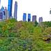 Skyscrapers , The Pond & Gapstow Bridge Central Park Manhattan New York City NY P00432 DSC_0258