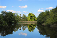 Reflective lake (big_jeff_leo) Tags: scene scenic reflection lakes cheshire countryside england