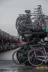 Fietsen - Bicycles (naturum) Tags: 2020 bicycle bicyclerack bike centraalstation centralstation februari february fiets fietsenstalling geo:lat=5238093121 geo:lon=489889597 geotagged holland nederland netherlands winter amsterdam noordholland ssc saturdayselfchallenge