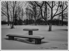 Winter evening in the village / Зимний вечер в деревне (dmilokt) Tags: природа nature пейзаж landscape dmilokt закат рассет солнце sun sunset sunrise