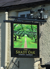 English Pub Sign - the Shady Oak, Cheshire (big_jeff_leo) Tags: sign pubsign pub publichouse painted streetart cheshire