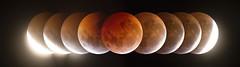 Eclipse Lunar 2019 (Luis Rojas M.) Tags: astronomía sky luna moon eclipse astronomy astrophotography nature space canon chile apod
