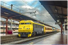 Tren de los 80 en Chamartín (440_502) Tags: 269 604 tren de los 80 ochenta aafm asociación amigos del ferrocarril madrid aaf ffcc chamartín alcázar san juan 6900 600 gata montés gato alsa rail renfe