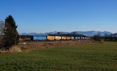 192 010 / TXL - Rann (lukasrothmann) Tags: bayern oberbayern heimat rann smartron 192 192010 klv txl txlogistik zug lok lokomotive train