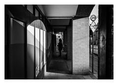 FILM - Through (fishyfish_arcade) Tags: 35mm analogphotography bw blackwhite blackandwhite filmphotography filmisnotdead hp5 istillshootfilm monochrome nikkor50mmf18afd nikonf80 analogcamera film ilford mono streetphotography subframe
