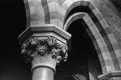 20180117_Nat-Hist_Museum_Electro35_TMAX400_XTOL_29A_web (Bossnas) Tags: 2018 35mm bw electro35 expired film kodak lunchhour naturalhistorymuseum oxford pakon tmax400 xtol yashica