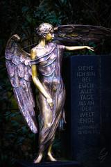 Golden Angel (sebalehm) Tags: deutschland friedhof gegenstand grab manmade ort statue uetersen
