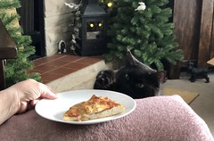No Pizza for You 😂 National Pizza Day 2 of 2 (Cabinet of Old Secret Loves) Tags: pizza pizzaday nationalpizzaday cute blackcat hilarious funny flickr bat italianfood foodforthesoul flickrcats sundaythoughts facebookcats catsofinstagram sundayvibes catsoftwitter foodforthecat vero facebook verocats