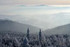 Untitled (Grzesiek.) Tags: górysowie owlmountains winter zima